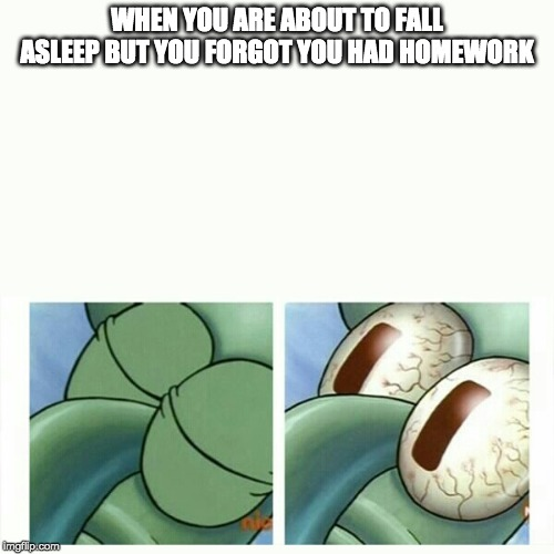 Squidward sleep | WHEN YOU ARE ABOUT TO FALL ASLEEP BUT YOU FORGOT YOU HAD HOMEWORK | image tagged in squidward sleep | made w/ Imgflip meme maker