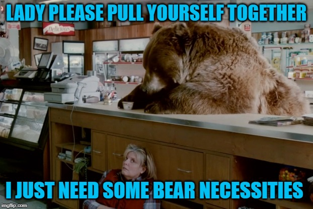 Gotta have those necessities!!! | LADY PLEASE PULL YOURSELF TOGETHER I JUST NEED SOME BEAR NECESSITIES | image tagged in bear in grocery store,memes,bear necessities,funny,bears,animals | made w/ Imgflip meme maker