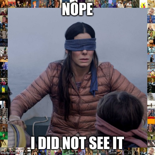 NOPE I DID NOT SEE IT | image tagged in memes,bird box | made w/ Imgflip meme maker