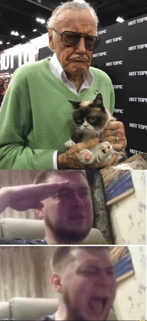 We will miss you Grumpy cat and Stan Lee (*Salute Intensifies*) | image tagged in salute to scream,stan lee,grumpy cat | made w/ Imgflip meme maker