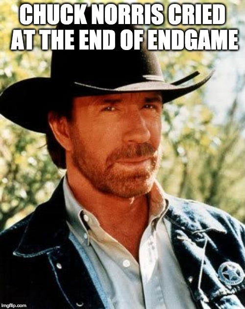 Chuck Norris Meme | CHUCK NORRIS CRIED AT THE END OF ENDGAME | image tagged in memes,chuck norris | made w/ Imgflip meme maker