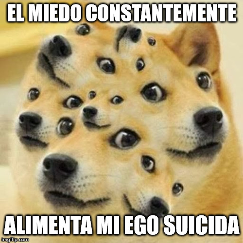 EL MIEDO CONSTANTEMENTE; ALIMENTA MI EGO SUICIDA | image tagged in doge 2,rare doge,multi doge,awkward doge | made w/ Imgflip meme maker