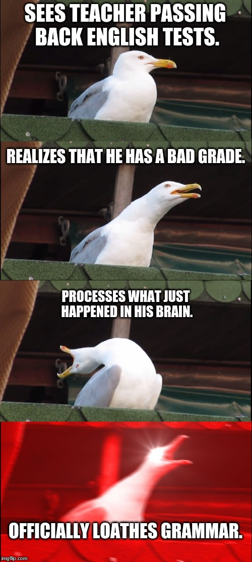 Inhaling Seagull Vs. English Test. | SEES TEACHER PASSING BACK ENGLISH TESTS. REALIZES THAT HE HAS A BAD GRADE. PROCESSES WHAT JUST HAPPENED IN HIS BRAIN. OFFICIALLY LOATHES GRA | image tagged in memes,inhaling seagull,grammar nazi,lol so funny | made w/ Imgflip meme maker