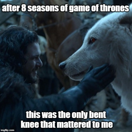 Jon Snow and Ghost | after 8 seasons of game of thrones this was the only bent knee that mattered to me | image tagged in jon snow,ghost,game of thrones | made w/ Imgflip meme maker