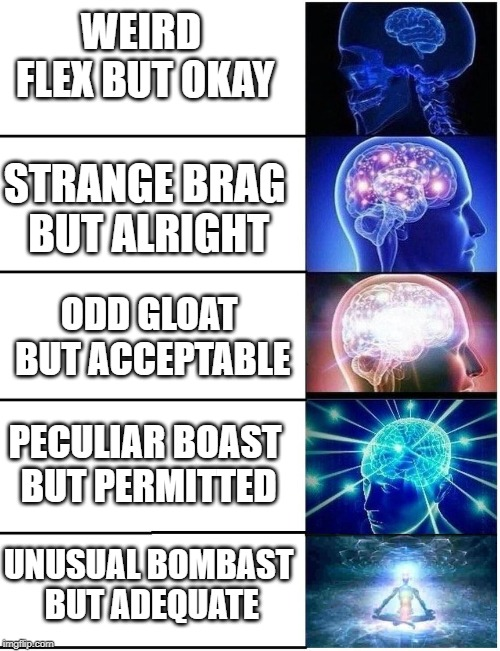 Expanding Brain 5 Panel | WEIRD FLEX BUT OKAY STRANGE BRAG BUT ALRIGHT ODD GLOAT BUT ACCEPTABLE UNUSUAL BOMBAST BUT ADEQUATE PECULIAR BOAST BUT PERMITTED | image tagged in expanding brain 5 panel | made w/ Imgflip meme maker