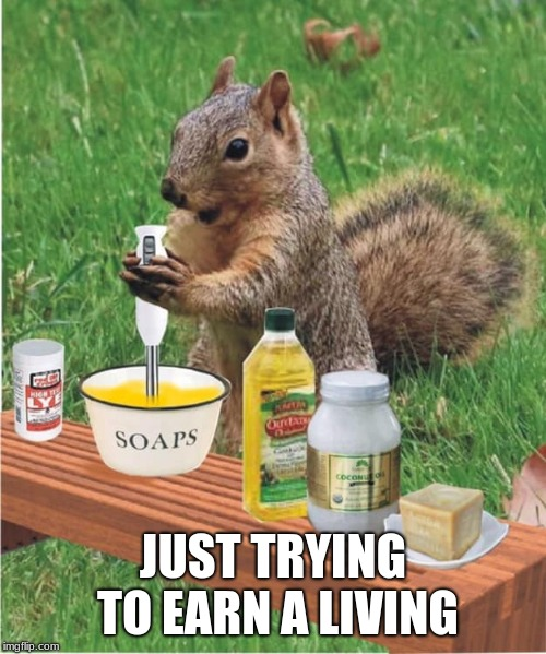 Times are tough | JUST TRYING TO EARN A LIVING | image tagged in soap making squirrel,trying to make a living,times are tough,soap,hand made | made w/ Imgflip meme maker