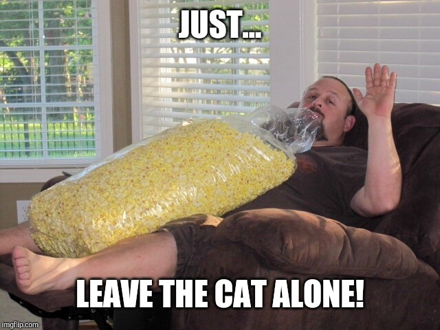 JUST... LEAVE THE CAT ALONE! | image tagged in enough popcorn | made w/ Imgflip meme maker