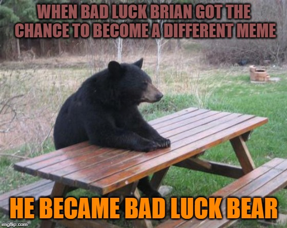 Bad Luck Brian in disguise | WHEN BAD LUCK BRIAN GOT THE CHANCE TO BECOME A DIFFERENT MEME HE BECAME BAD LUCK BEAR | image tagged in memes,bad luck bear | made w/ Imgflip meme maker