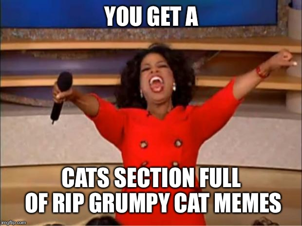 Oprah You Get A Meme | YOU GET A CATS SECTION FULL OF RIP GRUMPY CAT MEMES | image tagged in memes,oprah you get a | made w/ Imgflip meme maker