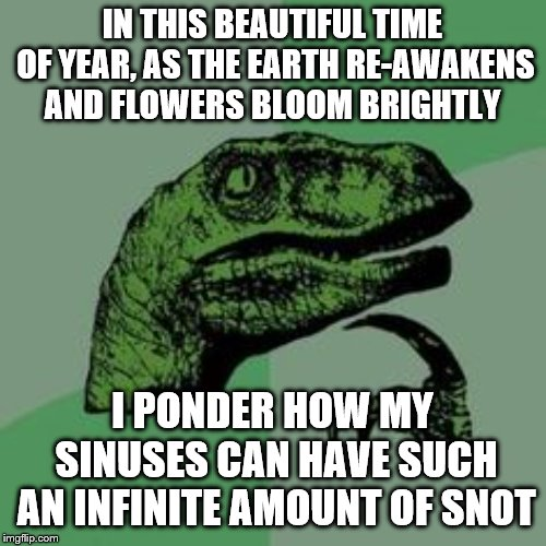Time raptor  | IN THIS BEAUTIFUL TIME OF YEAR, AS THE EARTH RE-AWAKENS AND FLOWERS BLOOM BRIGHTLY I PONDER HOW MY SINUSES CAN HAVE SUCH AN INFINITE AMOUNT  | image tagged in time raptor | made w/ Imgflip meme maker