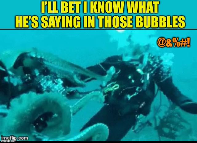 I'LL BET I KNOW WHAT HE'S SAYING IN THOSE BUBBLES @&%#! | made w/ Imgflip meme maker