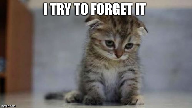 Sad kitten | I TRY TO FORGET IT | image tagged in sad kitten | made w/ Imgflip meme maker