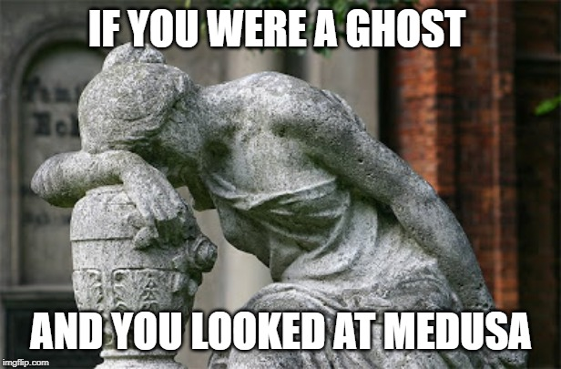 shake my head SMH | IF YOU WERE A GHOST AND YOU LOOKED AT MEDUSA | image tagged in shake my head smh | made w/ Imgflip meme maker