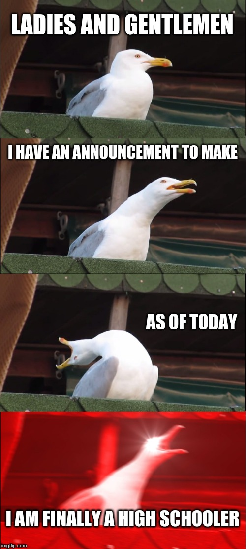 Inhaling Seagull Meme | LADIES AND GENTLEMEN I HAVE AN ANNOUNCEMENT TO MAKE AS OF TODAY I AM FINALLY A HIGH SCHOOLER | image tagged in memes,inhaling seagull | made w/ Imgflip meme maker
