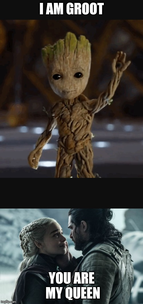 You are my queen | I AM GROOT YOU ARE MY QUEEN | image tagged in i am groot,you are my queen,game of thrones,jon snow,daenerys | made w/ Imgflip meme maker
