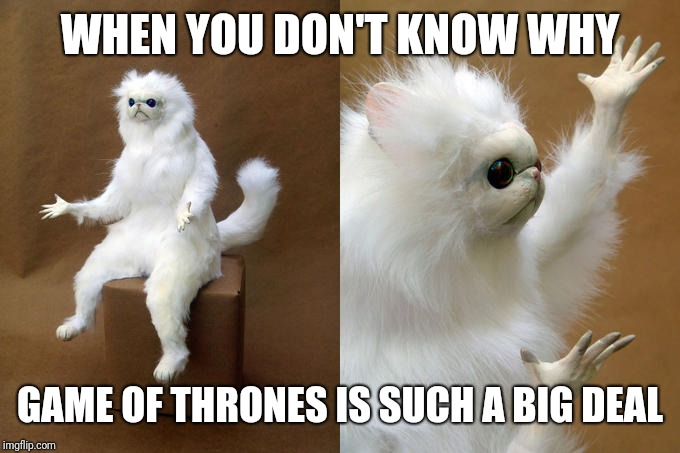 Persian Cat Room Guardian | WHEN YOU DON'T KNOW WHY GAME OF THRONES IS SUCH A BIG DEAL | image tagged in memes,persian cat room guardian,funny,funny memes,latest,game of thrones | made w/ Imgflip meme maker