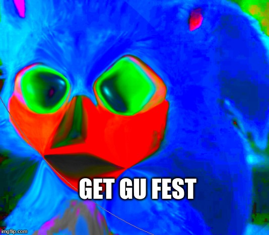 GET GU FEST | image tagged in derp,sonic the hedgehog | made w/ Imgflip meme maker