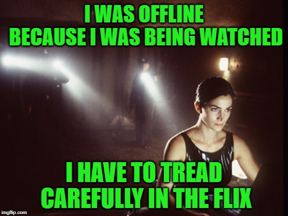 I WAS OFFLINE BECAUSE I WAS BEING WATCHED I HAVE TO TREAD CAREFULLY IN THE FLIX | made w/ Imgflip meme maker