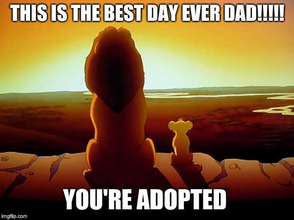 Lion King | THIS IS THE BEST DAY EVER DAD!!!!! YOU'RE ADOPTED | image tagged in memes,lion king | made w/ Imgflip meme maker