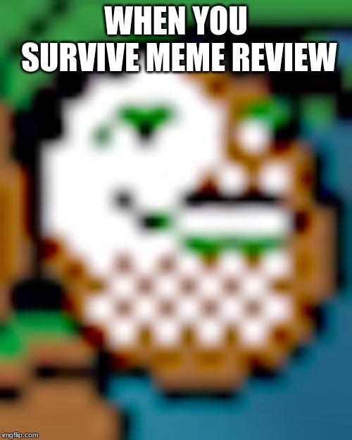 YES! | WHEN YOU SURVIVE MEME REVIEW | image tagged in pokemon,go,pewdiepie,pokemonmeme | made w/ Imgflip meme maker