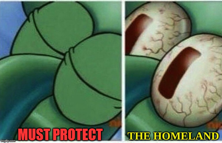 Squidward | MUST PROTECT THE HOMELAND | image tagged in squidward | made w/ Imgflip meme maker