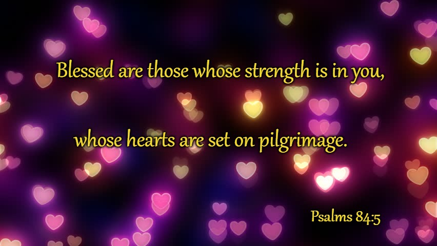 Psalms 84:5 Blessed Are Those Whose Strength Is In You |  Blessed are those whose strength is in you, whose hearts are set on pilgrimage. Psalms 84:5 | image tagged in bible,bible verse,verse,holy bible,holy spirit,god | made w/ Imgflip meme maker