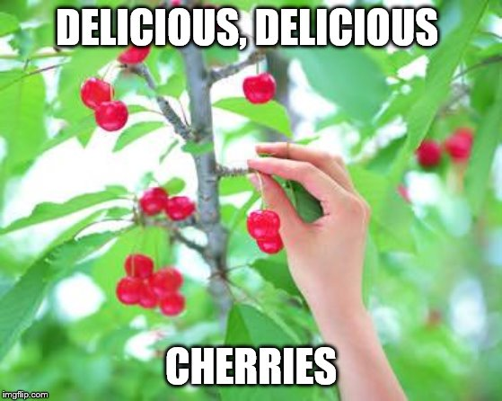 we select on the best facts | DELICIOUS, DELICIOUS CHERRIES | image tagged in cherry picking | made w/ Imgflip meme maker