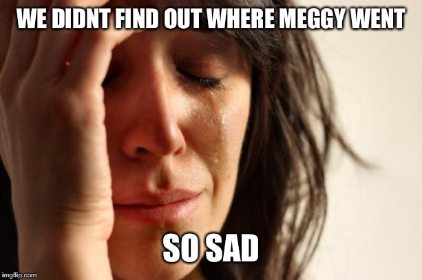 WE DIDNT FIND OUT WHERE MEGGY WENT SO SAD | image tagged in memes,first world problems | made w/ Imgflip meme maker