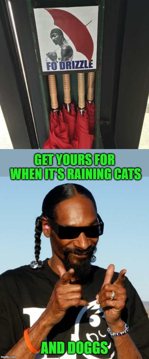 It's spittin, but no rhymes | GET YOURS FOR WHEN IT'S RAINING CATS AND DOGGS | image tagged in snoop dogg approves,umbrella,fo drizzle,raining,cats,dogs | made w/ Imgflip meme maker