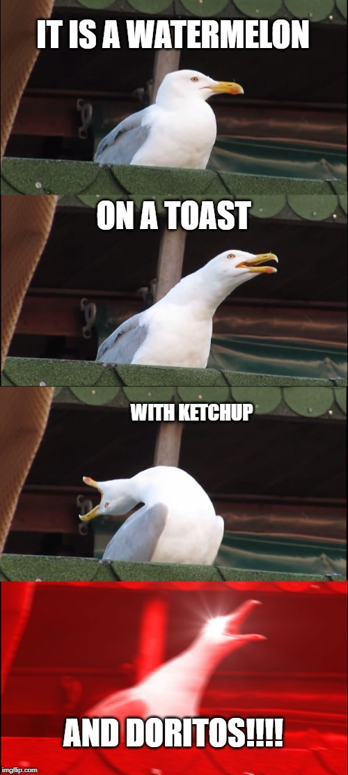 Inhaling Seagull | IT IS A WATERMELON ON A TOAST WITH KETCHUP AND DORITOS!!!! | image tagged in memes,inhaling seagull,watermelon,toast,ketchup,doritos | made w/ Imgflip meme maker