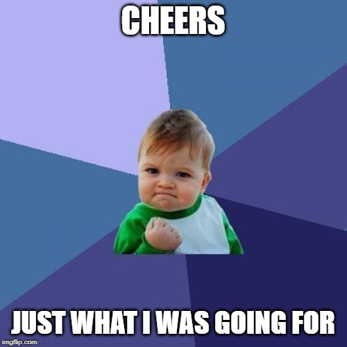 Success Kid Meme | CHEERS JUST WHAT I WAS GOING FOR | image tagged in memes,success kid | made w/ Imgflip meme maker