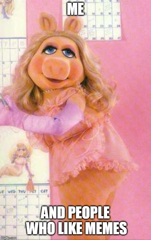 ME AND PEOPLE WHO LIKE MEMES | image tagged in miss piggy | made w/ Imgflip meme maker