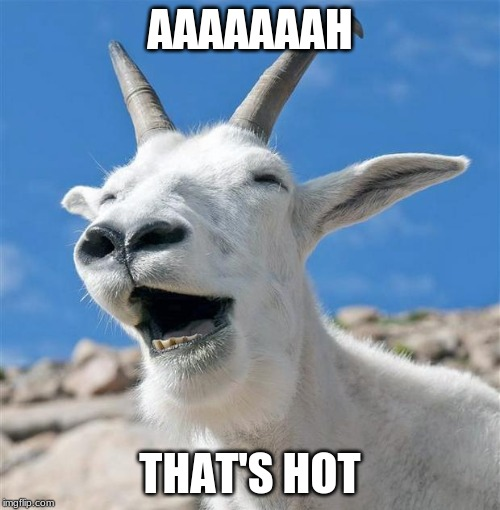 Laughing Goat |  AAAAAAAH; THAT'S HOT | image tagged in memes,laughing goat | made w/ Imgflip meme maker