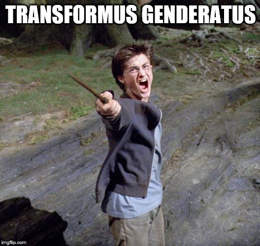 TRANSFORMUS GENDERATUS | image tagged in harry potter | made w/ Imgflip meme maker