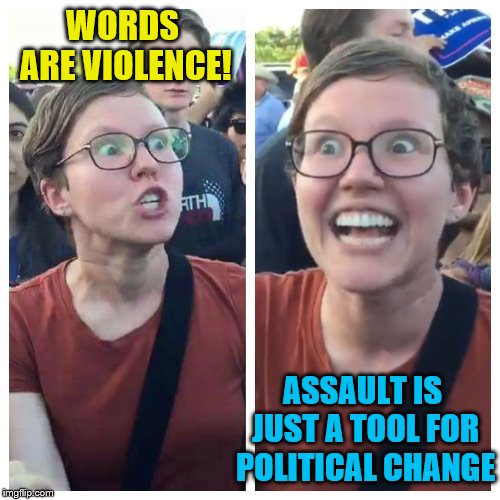 Social Justice Warrior Hypocrisy | WORDS ARE VIOLENCE! ASSAULT IS JUST A TOOL FOR POLITICAL CHANGE | image tagged in social justice warrior hypocrisy,memes,politics,assault | made w/ Imgflip meme maker