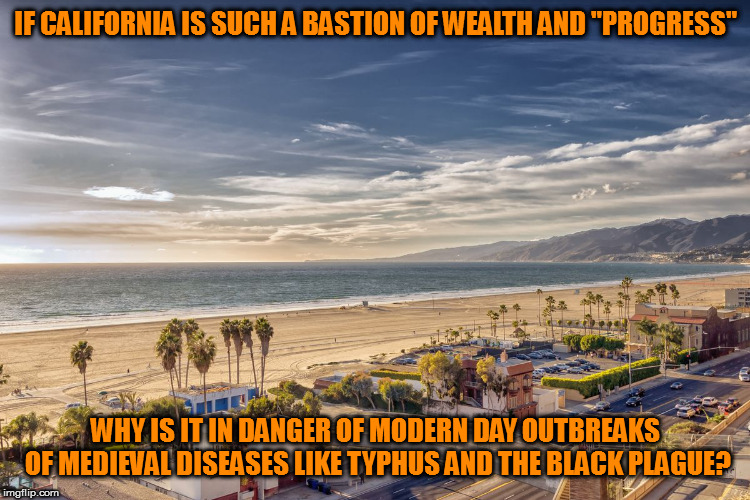 "Isn't that the definition of RE-gressing? | IF CALIFORNIA IS SUCH A BASTION OF WEALTH AND ""PROGRESS"" WHY IS IT IN DANGER OF MODERN DAY OUTBREAKS OF MEDIEVAL DISEASES LIKE TYPHUS AND TH 