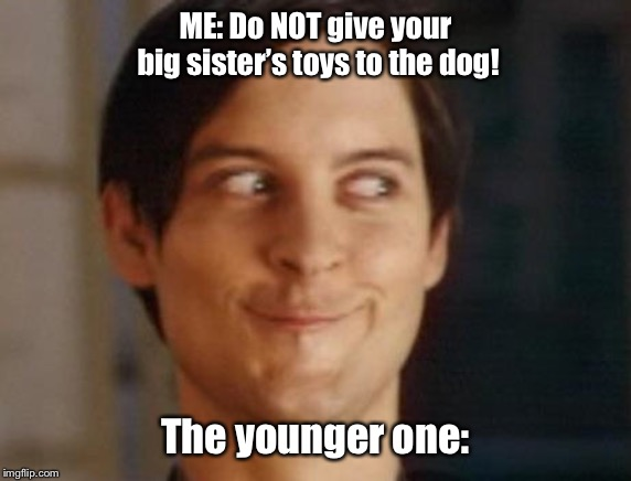 When they see a challenge. | ME: Do NOT give your big sister's toys to the dog! The younger one: | image tagged in memes,spiderman peter parker | made w/ Imgflip meme maker