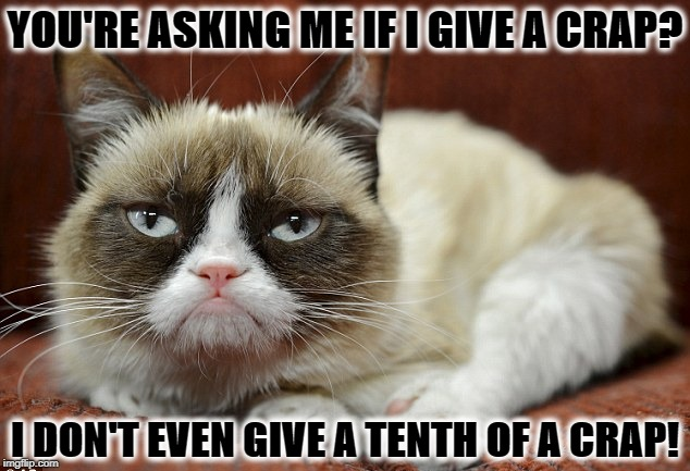GRUMPY CAT | YOU'RE ASKING ME IF I GIVE A CRAP? I DON'T EVEN GIVE A TENTH OF A CRAP! | image tagged in grumpy cat | made w/ Imgflip meme maker