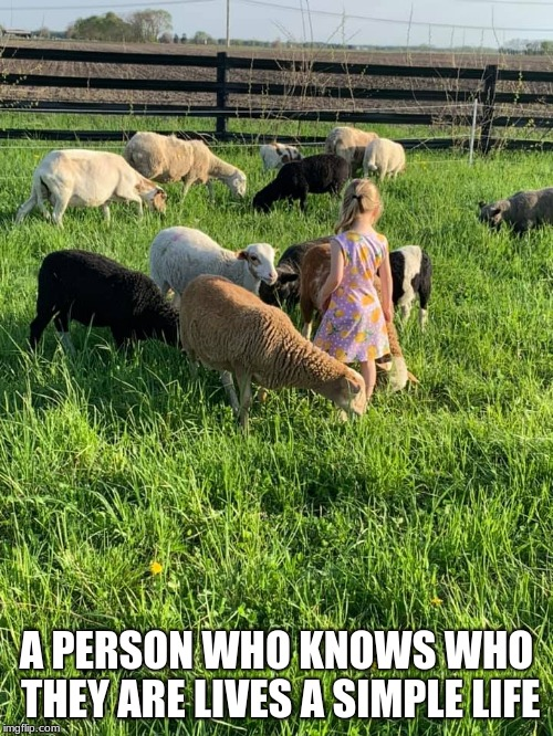 Life's simple pleasures | A PERSON WHO KNOWS WHO THEY ARE LIVES A SIMPLE LIFE | image tagged in life's simple pleasures,raise sheep not hell,diversity,country living | made w/ Imgflip meme maker