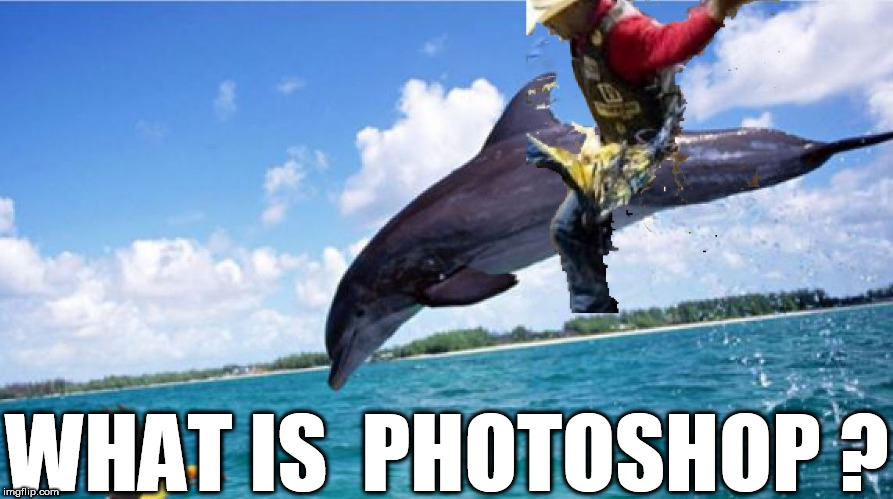 photoshop?  What is  that? | WHAT IS  PHOTOSHOP ? | image tagged in photoshop,what is photosghop,this software called  photoshop,what is it | made w/ Imgflip meme maker