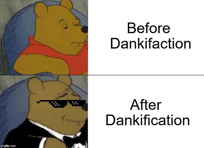 Tuxedo Winnie The Pooh | Before Dankifaction After Dankification | image tagged in memes,tuxedo winnie the pooh | made w/ Imgflip meme maker