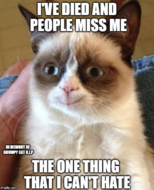 Grumpy Cat Happy | I'VE DIED AND PEOPLE MISS ME THE ONE THING THAT I CAN'T HATE IN MEMORY OF GRUMPY CAT R.I.P | image tagged in memes,grumpy cat happy,grumpy cat | made w/ Imgflip meme maker