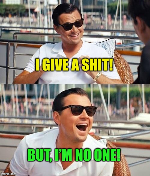 Leonardo Dicaprio Wolf Of Wall Street Meme | I GIVE A SHIT! BUT, I'M NO ONE! | image tagged in memes,leonardo dicaprio wolf of wall street | made w/ Imgflip meme maker