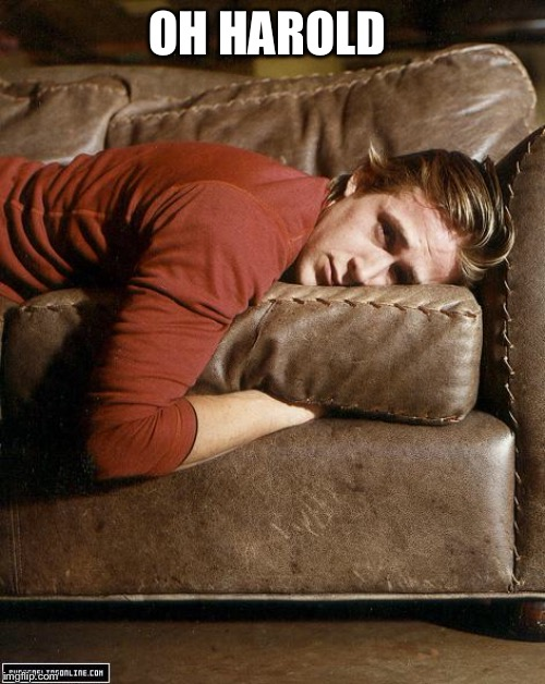 Ryan Gosling on a Couch | OH HAROLD | image tagged in ryan gosling on a couch | made w/ Imgflip meme maker