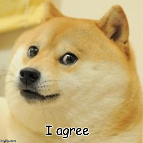 I agree | image tagged in memes,doge | made w/ Imgflip meme maker