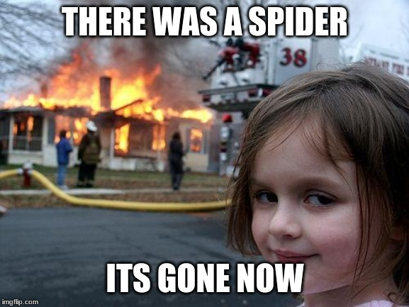 Disaster Girl Meme | THERE WAS A SPIDER ITS GONE NOW | image tagged in memes,disaster girl | made w/ Imgflip meme maker