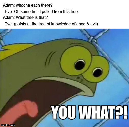 you what! | Adam: whacha eatin there? Eve: Oh some fruit I pulled from this tree Adam: What tree is that? Eve: (points at the tree of knowledge of good  | image tagged in dank memes | made w/ Imgflip meme maker