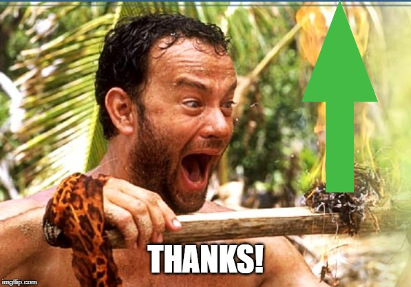 Castaway Fire Meme | THANKS! | image tagged in memes,castaway fire | made w/ Imgflip meme maker