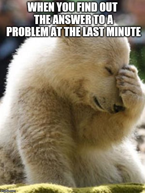Facepalm Bear Meme | WHEN YOU FIND OUT THE ANSWER TO A PROBLEM AT THE LAST MINUTE | image tagged in memes,facepalm bear | made w/ Imgflip meme maker