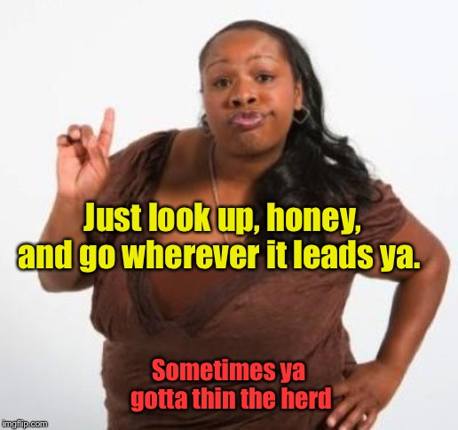 sassy black woman | Just look up, honey, and go wherever it leads ya. Sometimes ya gotta thin the herd | image tagged in sassy black woman | made w/ Imgflip meme maker